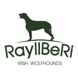 RayllBeRi